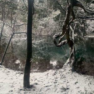 2020.12.30 雪の丸池様