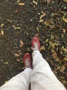 ムーンスターの靴で歩く
