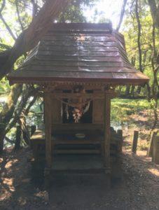 丸池神社 拝殿