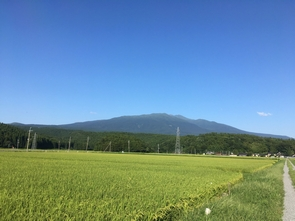 雪のない鳥海山