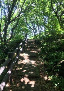 三崎公園遊歩道6
