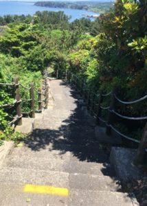 三崎公園遊歩道7
