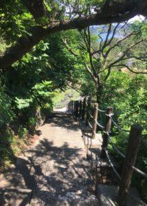 三崎公園遊歩道8
