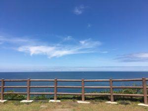 三崎公園見晴らし台景色