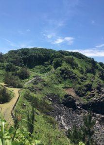 三崎公園遊歩道10