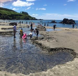 砂浜湧き水