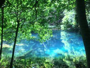 美しい丸池様