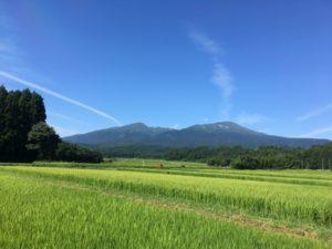 杉沢地区から見た鳥海山